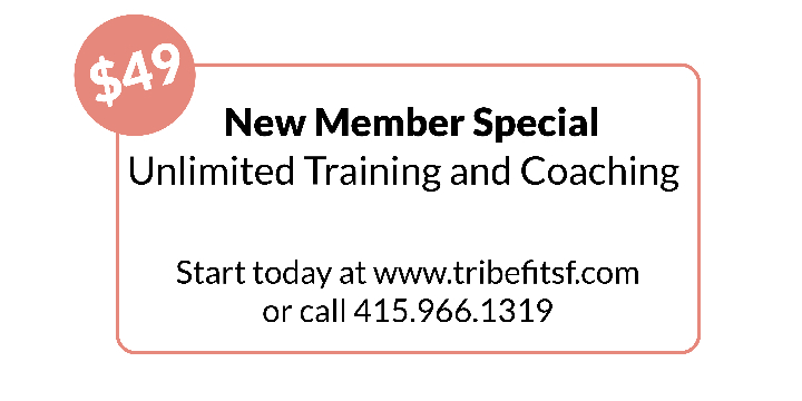 10-Day New Member Special. Unlimited Training and Coaching. Only $49.00  offer image
