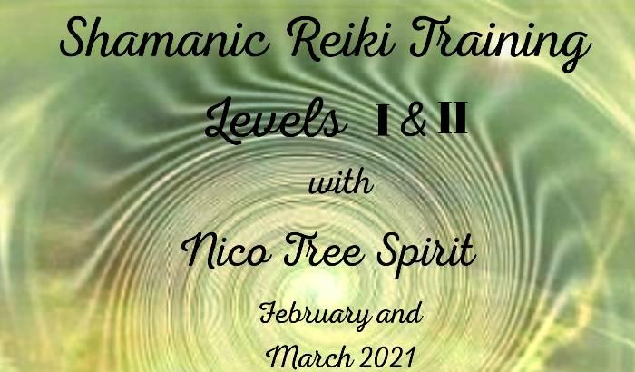 Shamanic Reiki Level I & II Training