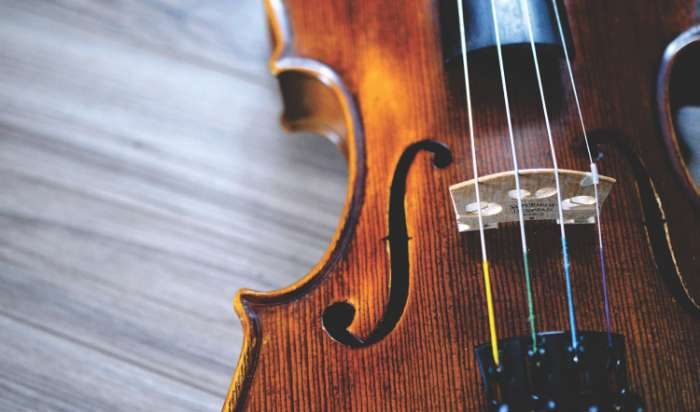 Violin Lessons article image