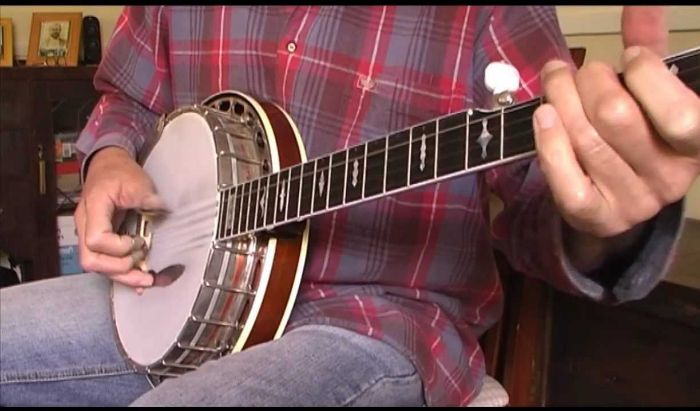 Banjo Lessons article image
