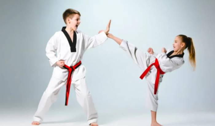 Karate for Kids (Ages 7-12)