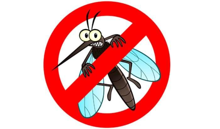 Mosquitos control in Fullerton, CA article image