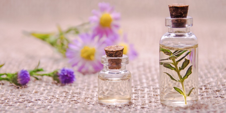 ZENsational Study Space - FREE Essential Oil Set with all diffusers - Partner Offer Image