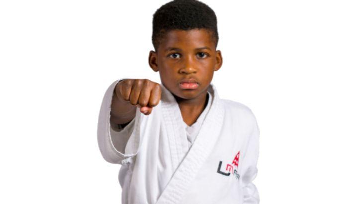 Kids Martial Arts article image