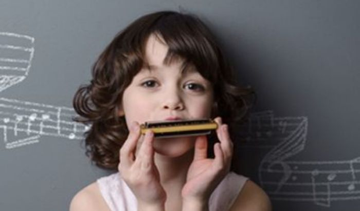 Harmonica Lessons article image