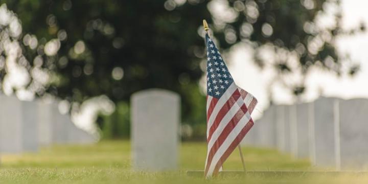 Veterans Day Thank You! - CBD and PTSD Oils 20% Off - Partner Offer Image