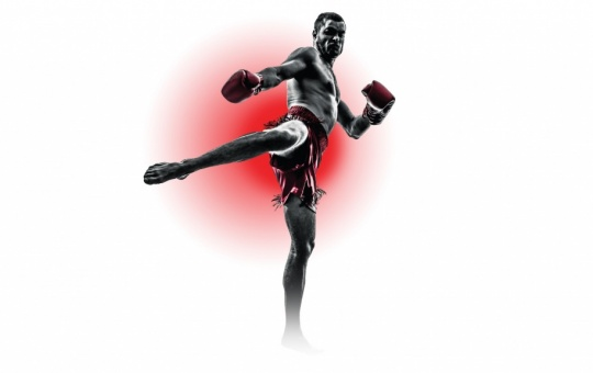 Kickboxing and Boxing