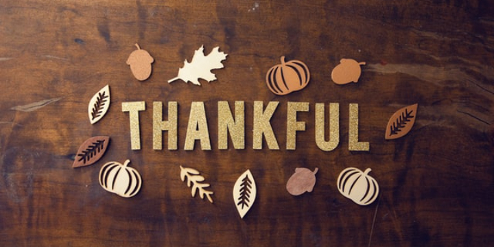 Happy Thanksgiving - Buy 2 Get One Free All Essential Oils - Partner Offer Image