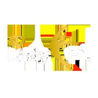 Lady Fit Logo