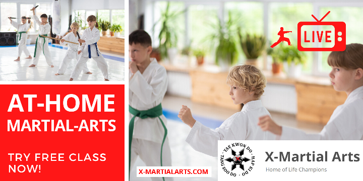 FREE - LIVE-ONLINE Martial Arts Class  offer image