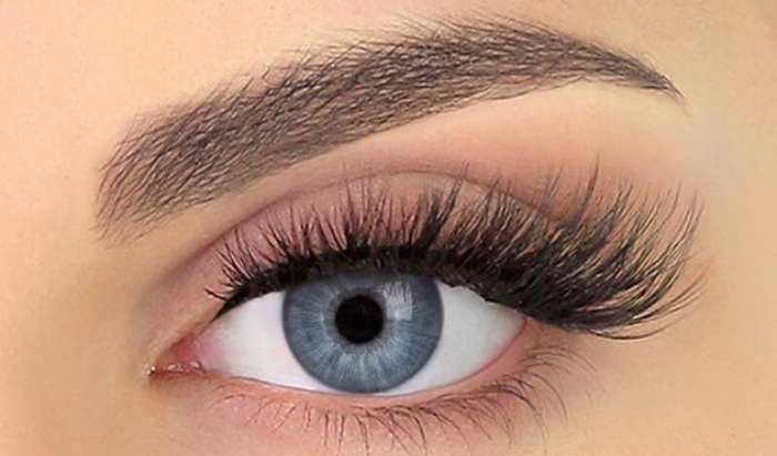 Lashes & Brows article image