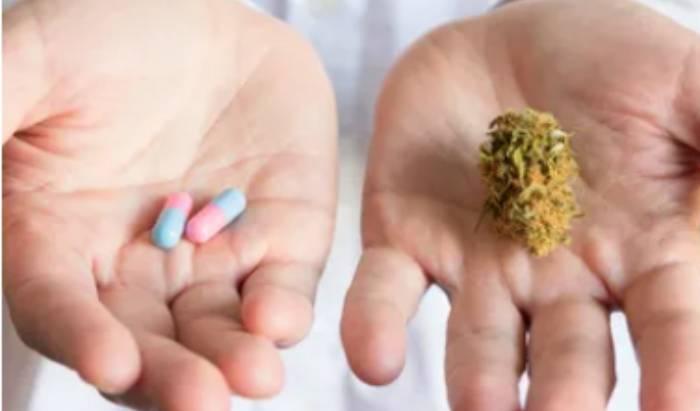 Cannabis and Healing